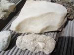 koralli kivistis