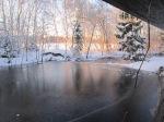 Talvehommik.