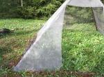 püramiidis
