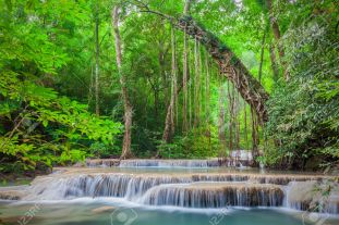 Tropical Rainforest Landscape, Thailand, Asia